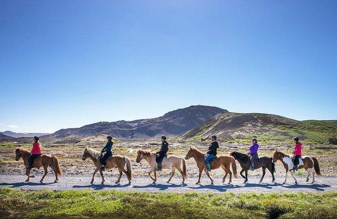 Riding Icelandic Horses near the Ring Road