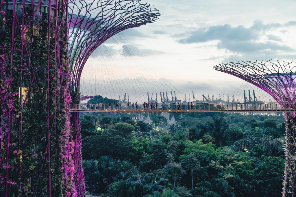 Tourists exploring Supertree Grove in Singapore.
