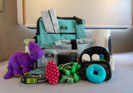 A bag with all the essentials your dog will need to go on an overnight trip.