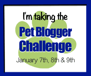 Join the Pet Blogger Challenge Jan 7th, 8th and 9th