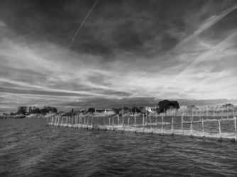 Jezioro Albufera - Walencja