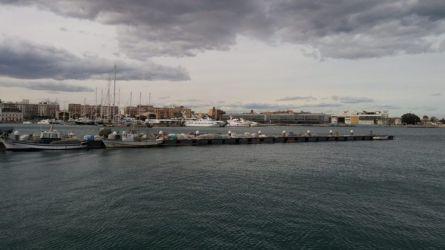 Targ ryb i owoców morza - Port Walencja 2