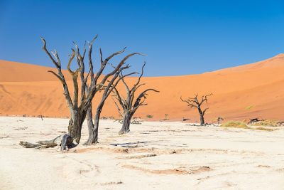 Sifting the Sands of Namibia on an African Safari | Goway