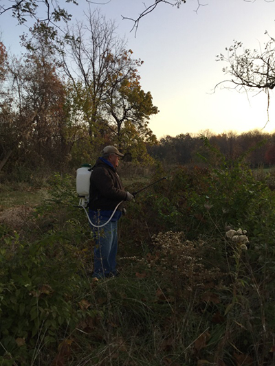 Spraying invasive plants at Sharon Woods Golf Course