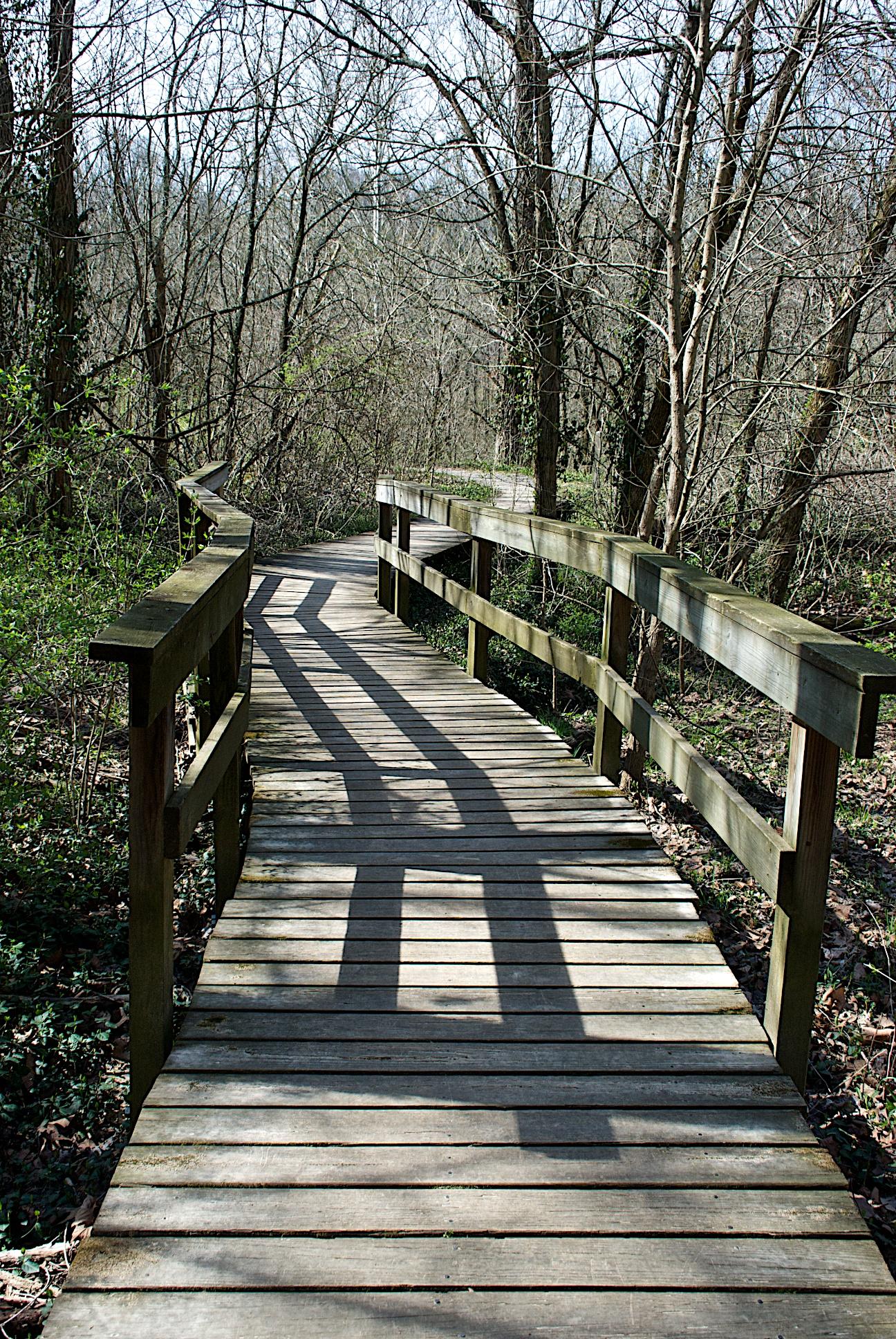 Winton Woods Kingfisher Trail