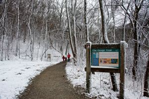 Gorge Trail at Sharon Woods