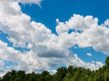 White clouds in a bright blue sky. The tops of green trees are visible.
