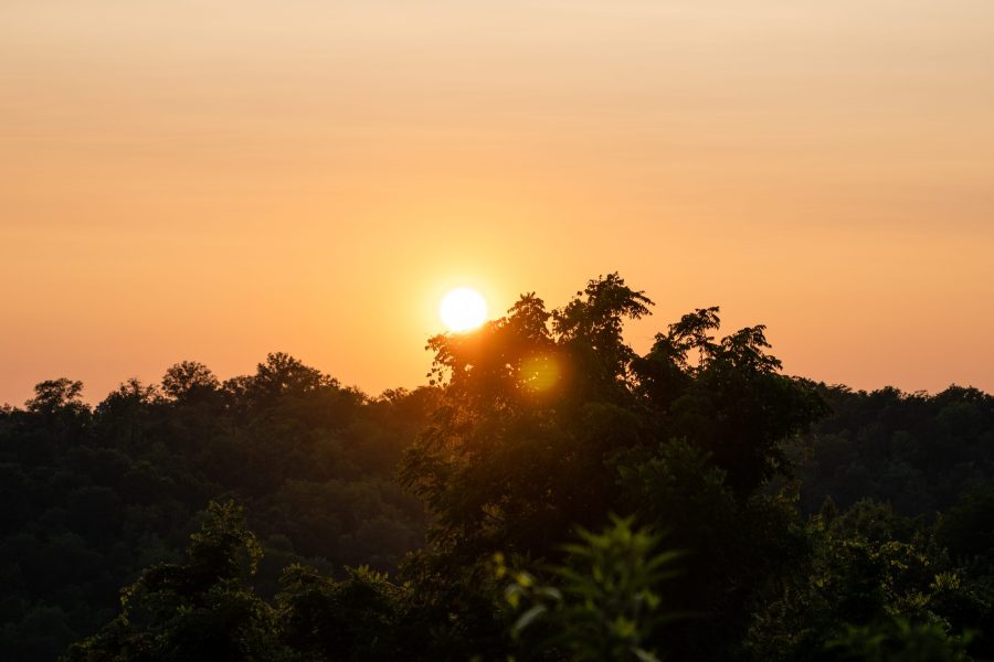 The sun sets over Woodland Mound, creating a contrast of a yellowish-orange sky against green trees.
