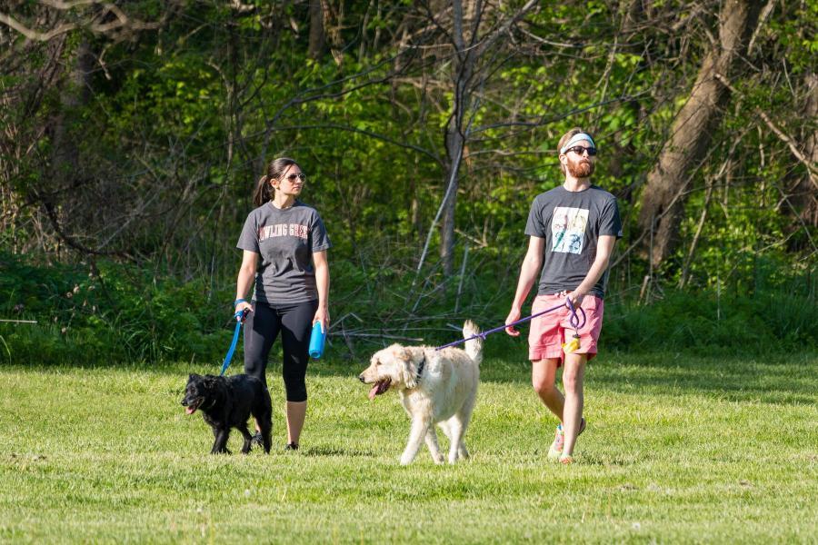 A woman and a man each walk a dog through the grass.