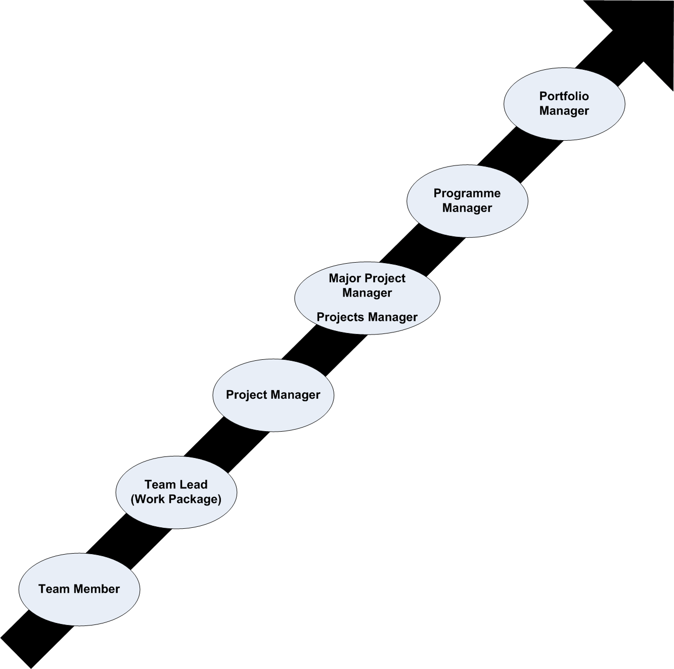Career Paths for Those Interested in Project Management