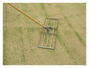 To properly topdress a green you need to work the sand into the greens; spread it around.