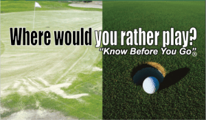 Where would you rather play?