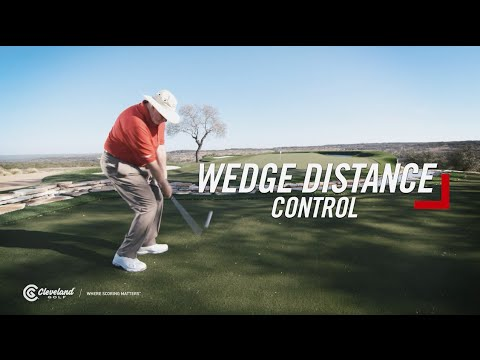 Wedge Distance Control #OWN125