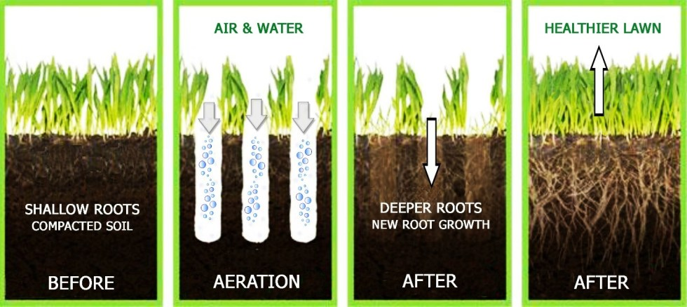 Aeration why it's important