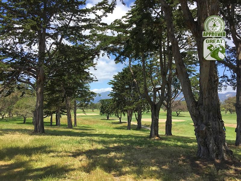 Sandpiper Golf Course Goleta California GK Review Guru Visit - The idyllic trees