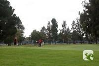 Los Amigos Golf Course Downey CA Hole 13 Green-side