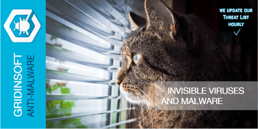 Invisible Viruses and Malware