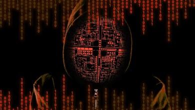 DirtyMoe botnet infected