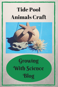 Growing With Science Tide Pool Animals Craft