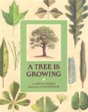 A-tree-is-growing