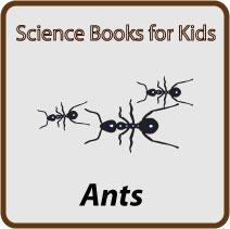 ant-books-button