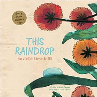 this raindrop book