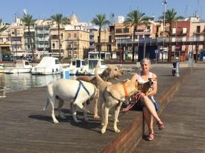 cuidar perro cerca port aventura Toñi
