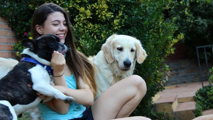 cuidador_perros