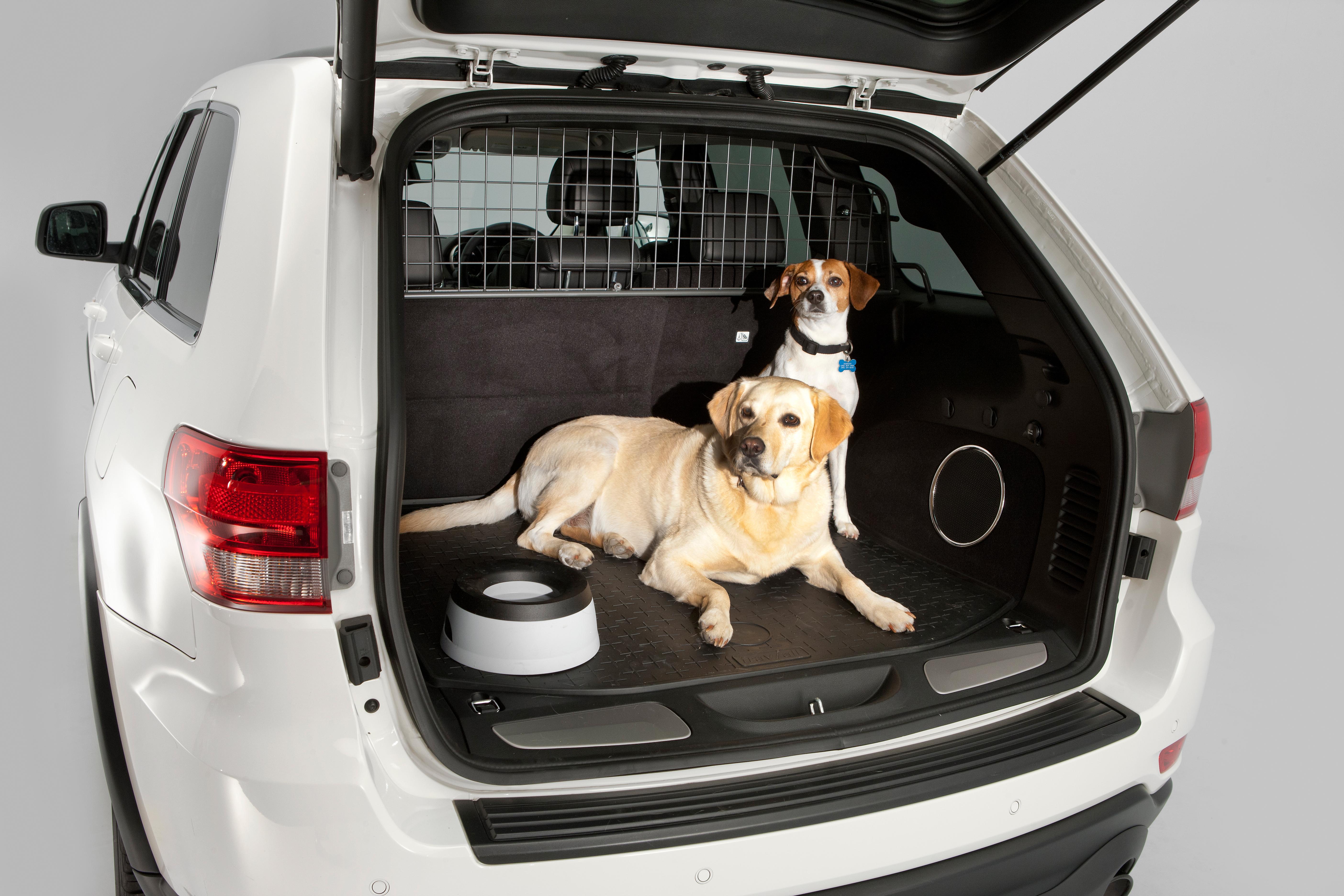 voyager en voiture avec votre chien en toute s curit gublog gudog fr blog. Black Bedroom Furniture Sets. Home Design Ideas
