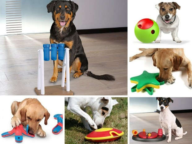 juegos_interactivos_para_perros