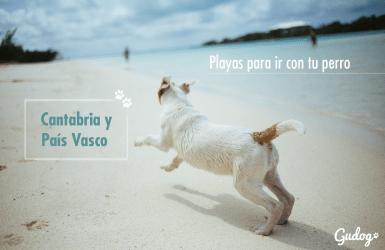 playas para perros cantabria y país vasco