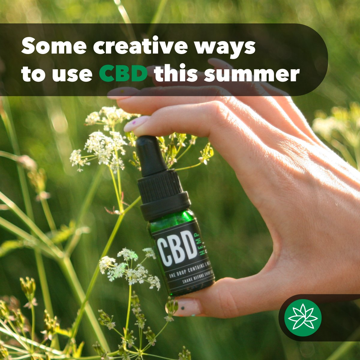 GWEE PRODUCTS CBD OIL