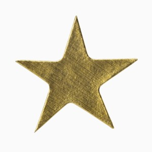 Golden Star Sticker