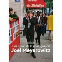 Une vision de la photographie, de Joel Meyerowitz