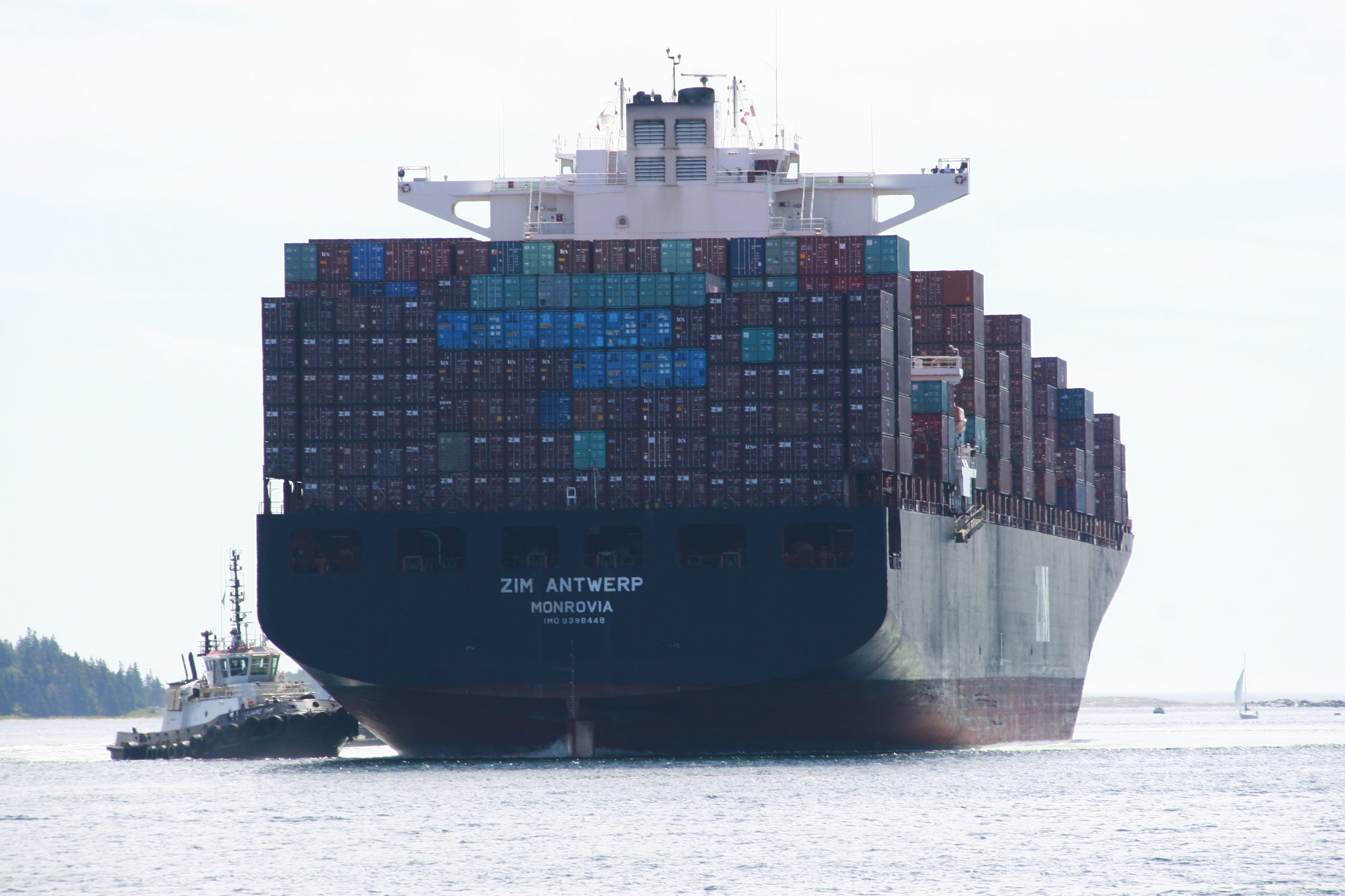 the shipping news essay