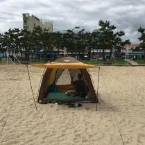 그늘막 텐트를 치고...