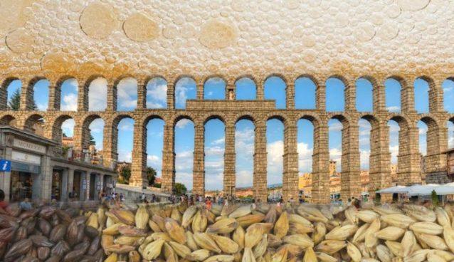 Segovia Cerveza y Malta