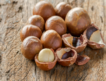 origins of macadamia nuts