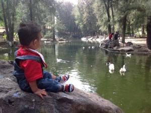 En el lago