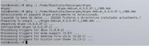 Skype Linux 06