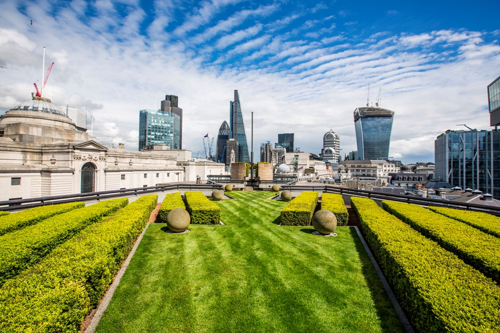 A rooftop that is covered in turf and green shrubs with the view of London in the background