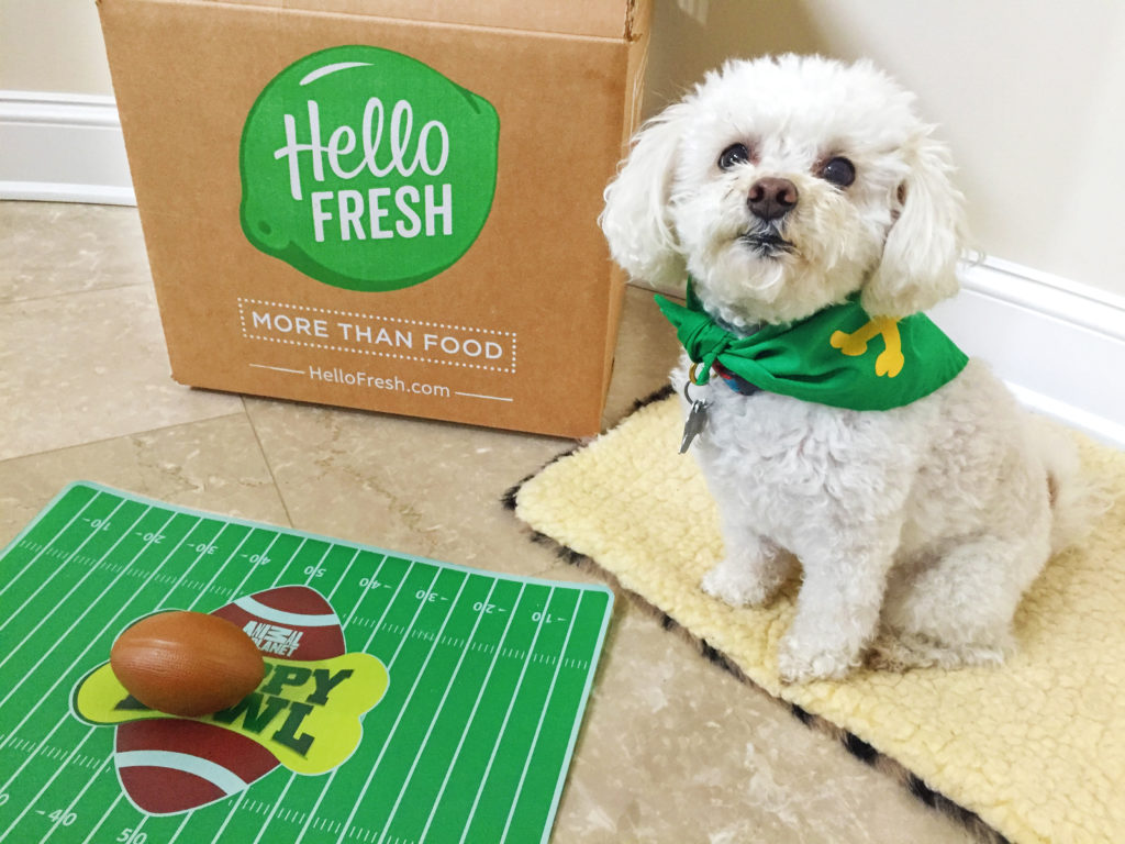 Puppy Bowl-HelloFresh