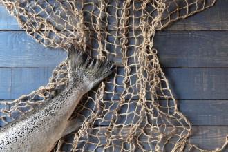 HelloFresh-Monterey-Bay-Aquarium-Seafood-Watch