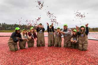 You Should Be Eating Cranberries for Breakfast — and other Important Life Lessons We Learned at a Cranberry Bog