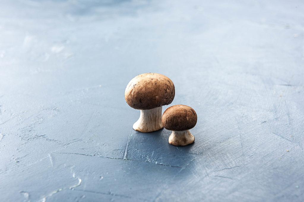 Pilze richtig einfrieren