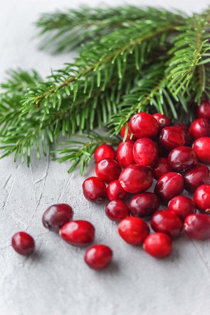 Weihnachtsduft selber machen: Tanne und Cranberries close up