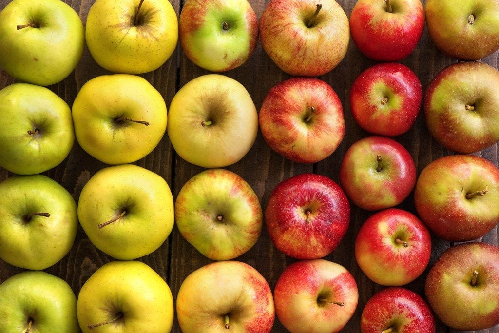Unsere Apfelsorten Übersicht für den Herbst
