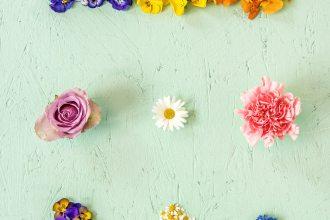Kleur in je keuken: eetbare bloemen