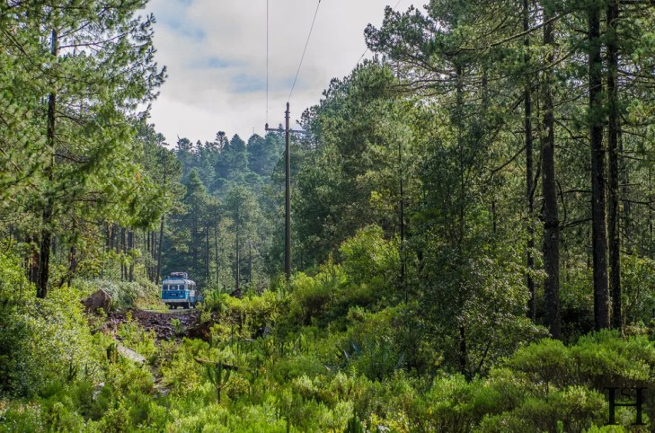 20120804-094949-Llano Grande, Mexiko, Ruta Piedra Larga, Sierra Norte, Weltreise-_DSC0728