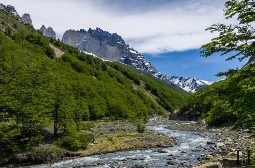 20121111-134414-Chile, Nationalpark, Patagonien, Torres del Paine, Trekking, Weltreise-_DSC2636